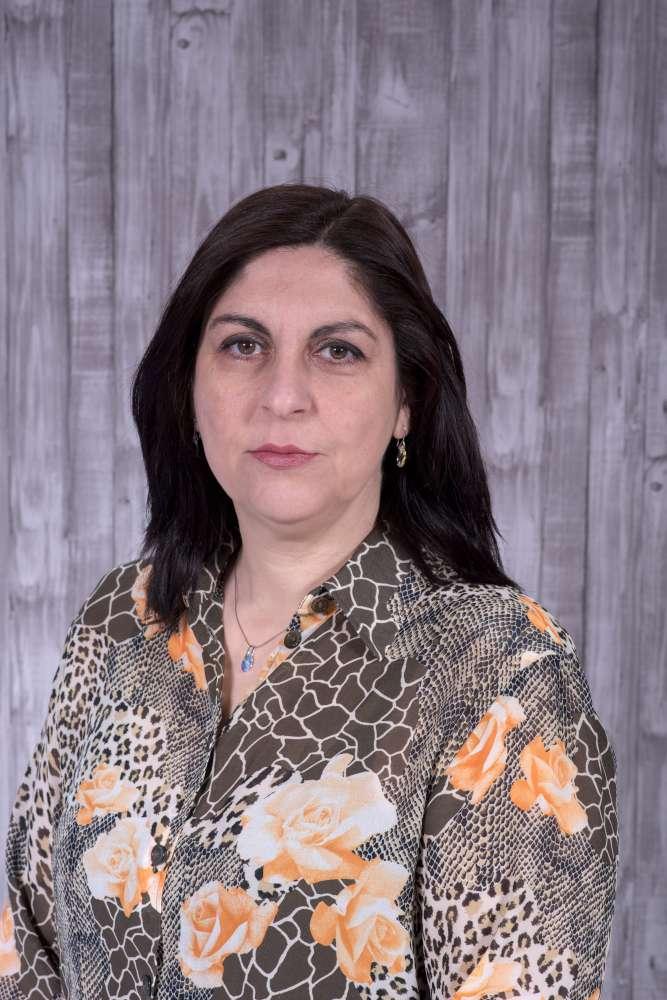 Каролина Дамјаноска Професор по физика