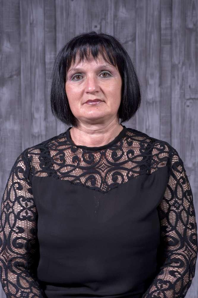 Медиана Николоска Професор по технологија