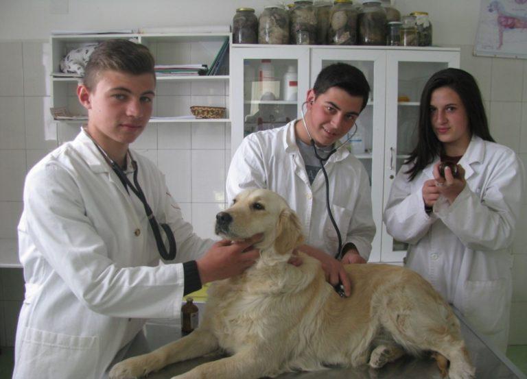 Техничар по ветеринарна медицина