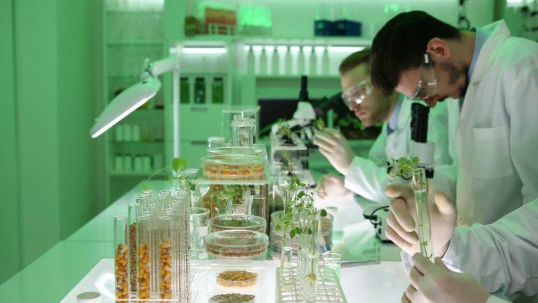 техничар за Фитомедицина